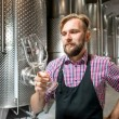 Постер, плакат: Wine maker at the manufacture