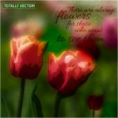 The illustration of  beautiful summer tulips field with an elegant quotation Creative and unique textured graphic style Totally vector image Useful for postcard print invitation card and more