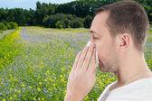 Allergia szezon, nemi erőszak