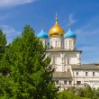 Постер, плакат: Russia Moscow Transfiguration Cathedral XVII century and the