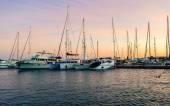 Marina-Boote und Yachten am Abend