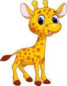 Cute giraffe cartoon on a white background
