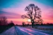Beautiful winter sunrise