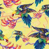 Okos madarak, ágak