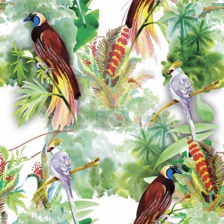 Тропические птицы-2