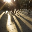 Постер, плакат: Crowds walking in a busy city district as the sun flares between them in the late afternoon creating long shadows on the ground