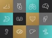 Einzeilige Körper Teile Piktogramme Set