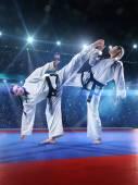 Két szakmai női karate harcosok harcolnak