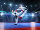 Dva profesionální ženské karate bojovníci bojují