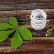 Постер, плакат: Cup spoon chestnut leaves