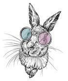 Ručně tažené králík v brýlích