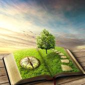 Illustrazione di magia aperto libro ricoperto di erba, bussola, albero e lapidato modo piano legnoso, balcone. mondo di fantasia, Mostra immaginaria. libro, albero della vita, concetto di modo giusto. screensaver originale