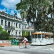 Постер, плакат: Old Town White Trolley Tour of Savannah