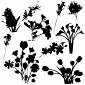 Flowers Silhouettes Vector for Use