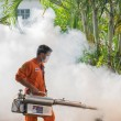 Постер, плакат: Fogging DDT spray kill mosquito