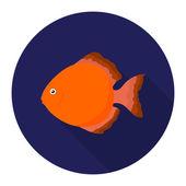 Discus fish icon flat Singe aquarium fish icon from the seaocean life flat