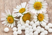 Homöopathische Globuli und Blumen