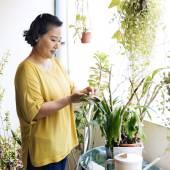 Donna asiatica in casa giardino, concetto di flora