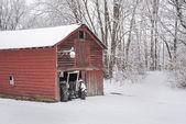 Winter Morning on the Farm