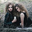 Постер, плакат: Two vintage witches gathered eve of Halloween