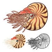 Hohe Qualität Nautilus-Cartoon-Figur mit einem Flach Entwurf und Linie Kunst Version