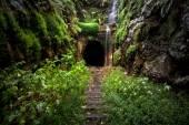 Versteckte Tunnel