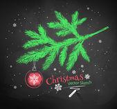 Vánoční strom jedle větev