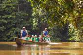 Biologists Exploring The Marvels Of  Amazon Jungle