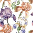 Постер, плакат: Seamless pattern with different irises