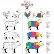 Постер, плакат: British Meat Cuts Diagrams