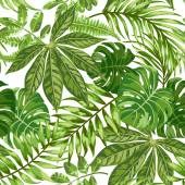 Seamless exotic pattern with tropical leaves on a white background Vector illustration