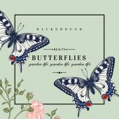 Vector card with butterflies and flowers