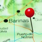 Постер, плакат: Puerto de Nutrias pinned on a map of Venezuela