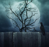 Bird stand on wood fence on spooky tree with moon, Halloween bac