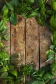Jídlo pozadí s aromatickými bylinkami