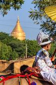 Become a novice on horse ,  Bagan in Myanmar (Burmar