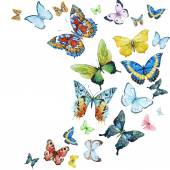 Akvarell pillangók