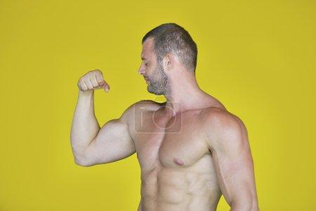 摆姿势的男性健美