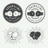 Box a bojové odznaky loga a popisky v retro stylu