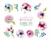 Watercolor design illustration of floral elements set
