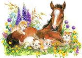 Cute horse. watercolor illustration