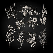 Collection of black and white flowers branches and berries in handdrawn style Vector illustration