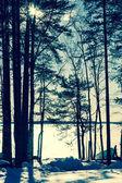 Zimní jezero v černé a bílé