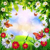 美丽的春天背景krásný jarní pozadí