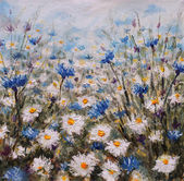 Flowers. Glade of cornflowers and daisies. Summer flowers.