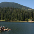 Постер, плакат: General view of Synevir lake in Carpathian region with tourists sailing on the ferry Ukraine