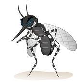 Natur, Stelzen Moskitos Krankheit Sender. Ideal für Informations- und institutionelle Hygiene und verwandte Sorgfalt