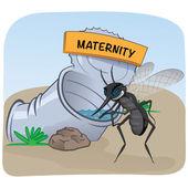 Zucht, können Sie mit stehendem Wasser mit Schwerpunkt Stelzenläufer Mücke. Ideal für Informations- und institutionelle Hygiene und verwandte Sorgfalt