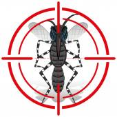 Natur, Sehenswürdigkeiten Aedes Aegypti Moskito mit Stelzenläufer Signal oder Ziel, vorne. Ideal für Informations- und institutionelle Verwandte Hygiene und Pflege