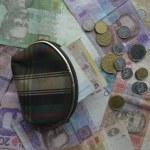 Постер, плакат: Ukrainian money wallet finance